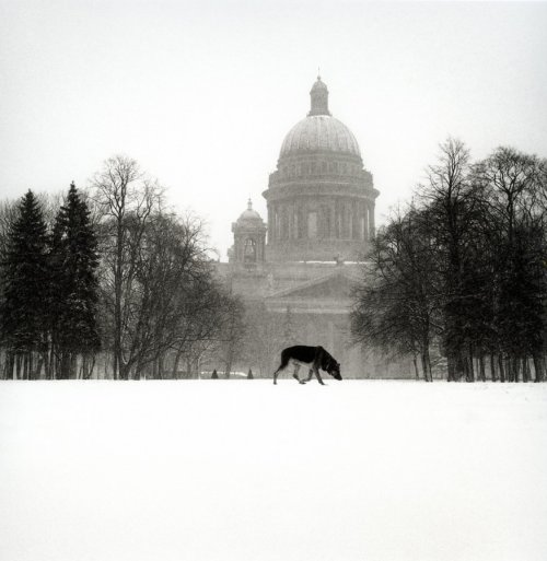 "Michael Kenna, ""Cold Dog Decembrist Square, St. Petersburg, Russia, 1999"""